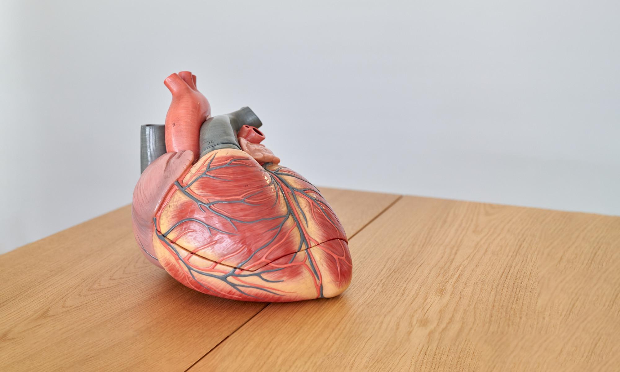 CardioPraxis